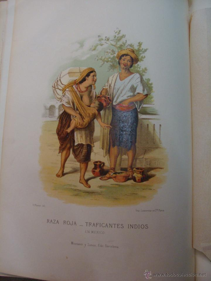 Libros antiguos: HISTORIA NATURAL VILANOVA Y PIERA. 8 TOMOS. 1872. 3260 ILUSTRACIONES LITOGRÁFICAS Y 105 CRÓMOLITOGRA - Foto 12 - 44073956