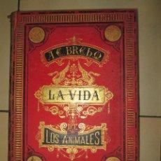 Libros antiguos: LA VIDA DE LOS ANIMALES. LOS REPTILES. TOMO V .. Lote 46390291