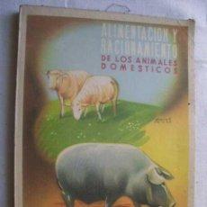 Libros antiguos: ALIMENTACIÓN Y RACIONAMIENTO DE LOS ANIMALES DOMÉSTICOS. REVUELTA GONZÁLEZ, LUIS. Lote 46434449
