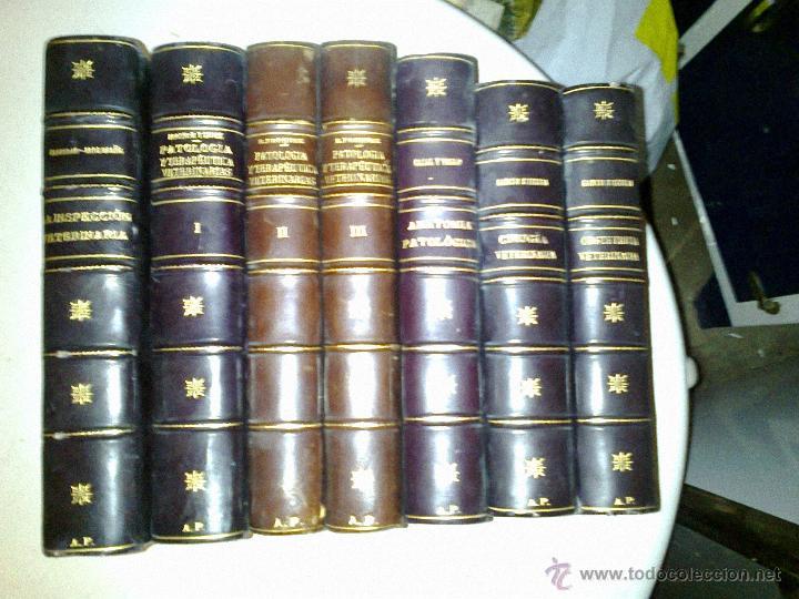 Libros antiguos: CIRUGÍA VETERINARIA. GARCÍA E IZCARA 1916 - Foto 4 - 38502628