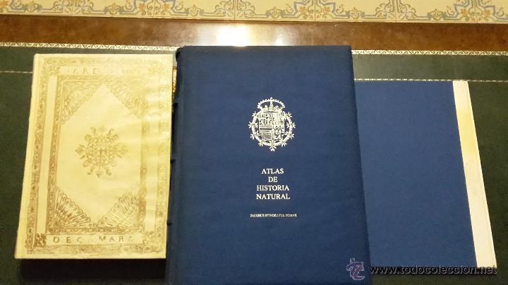 ATLAS DE HISTORIA NATURAL FELIPE II (Libros Antiguos, Raros y Curiosos - Ciencias, Manuales y Oficios - Bilogía y Botánica)