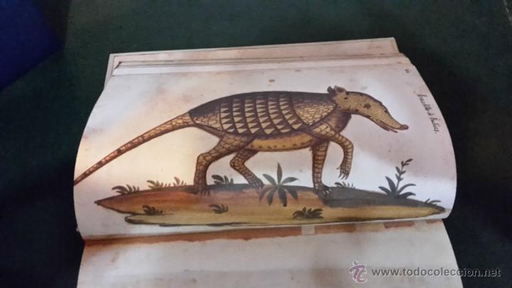 Libros antiguos: Atlas de historia natural felipe ii - Foto 3 - 46761111