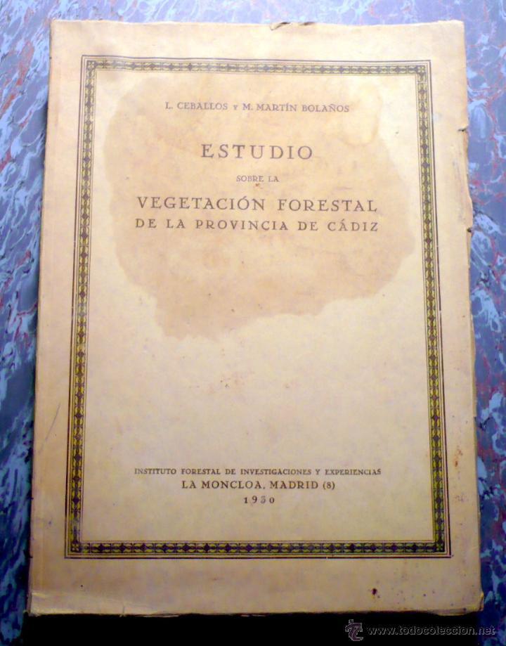 ESTUDIO VEGETACIÓN FORESTAL DE LA PROVINCIA DE CÁDIZ MADRID 1930 (Libros Antiguos, Raros y Curiosos - Ciencias, Manuales y Oficios - Bilogía y Botánica)