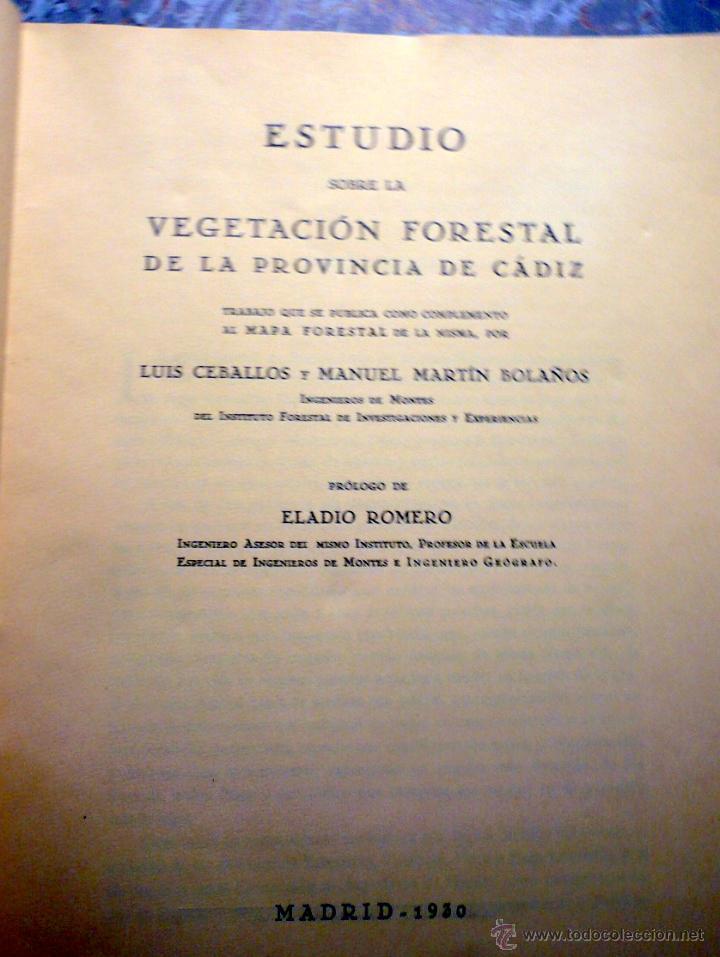 Libros antiguos: ESTUDIO VEGETACIÓN FORESTAL DE LA PROVINCIA DE CÁDIZ MADRID 1930 - Foto 2 - 47348997