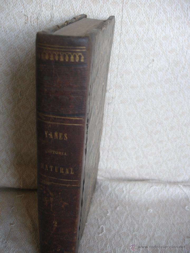 Libros antiguos: Lecciones de historia natural BOTANICA 1845 - Foto 2 - 47650582
