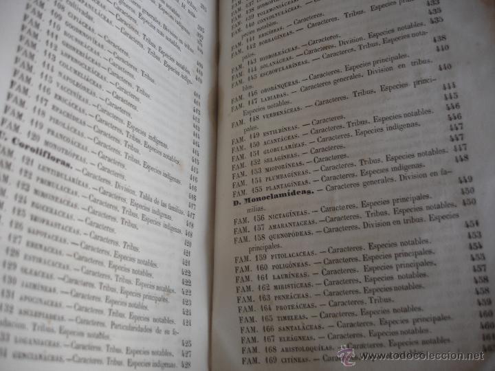 Libros antiguos: Lecciones de historia natural BOTANICA 1845 - Foto 11 - 47650582