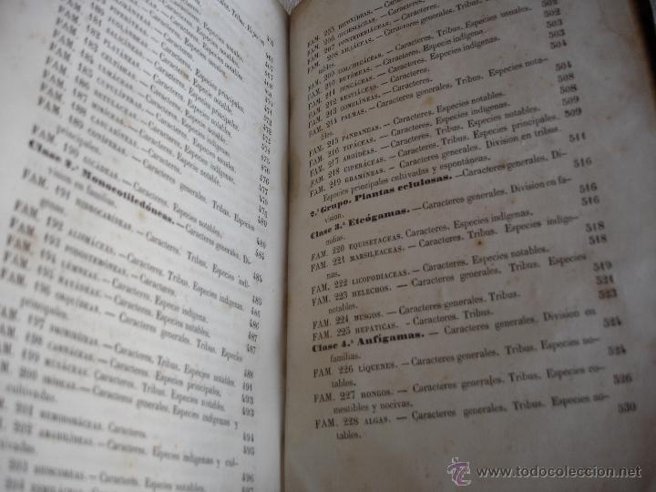 Libros antiguos: Lecciones de historia natural BOTANICA 1845 - Foto 12 - 47650582