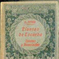 Libros antiguos: HITIER : PLANTAS DE ESCARDA - PATATAS Y REMOLACHAS (SALVAT, 1930) . Lote 49448192