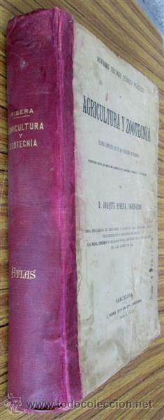 Libros antiguos: Novísimo tratado teórico practico AGRICULTURA Y ZOOTECNIA - ATLAS - Por Joaquín Ribera 1894 - Foto 4 - 49930850
