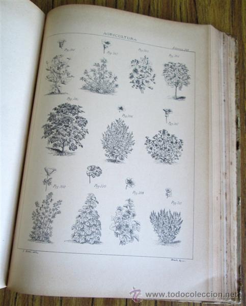 Libros antiguos: Novísimo tratado teórico practico AGRICULTURA Y ZOOTECNIA - ATLAS - Por Joaquín Ribera 1894 - Foto 10 - 49930850