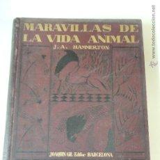 Libros antiguos: LAS MARAVILLAS DE LA VIDA ANIMAL 4 VOLUMENES COMPLETO 1931 JOAQUIN GIL HAMMERTON. Lote 50132936