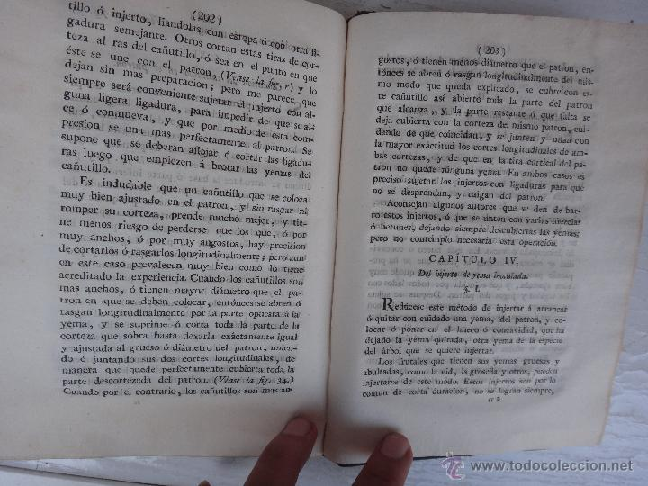 Libros antiguos: LIBRO TRATADO DEL INJERTO , 1817 , CLAUDIO BOUTELOU, ORIGINAL - Foto 5 - 50324293
