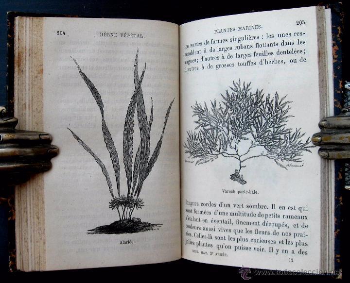 Libro Antiguo Ilustrado