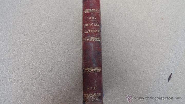 HISTORIA NATURAL DEL AÑO 1879 (Libros Antiguos, Raros y Curiosos - Ciencias, Manuales y Oficios - Bilogía y Botánica)
