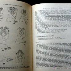 Libros antiguos: REVISTA ESPAÑOLA DE ENTOMOLOGIA - CUADERNOS 1º-4º - 1986 - ILUSTRADO - 350 PÁGINAS. Lote 50900034