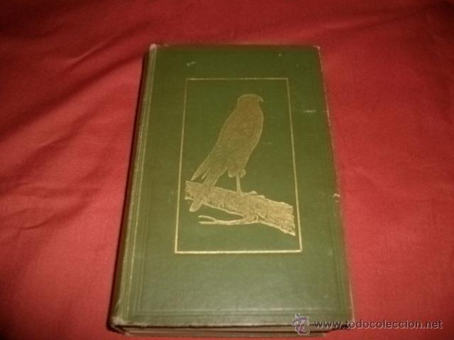 BRITISH BIRDS IN THEIR HAUNTS (1935) EN INGLÉS- ORNITOLOGÍA (Libros Antiguos, Raros y Curiosos - Ciencias, Manuales y Oficios - Bilogía y Botánica)