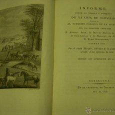 Libros antiguos: INFORME SOBRE LA MEJORA Y AUMENTO DE LA CRÍA DE CABALLOS, BARCELONA 1818 . Lote 51012368
