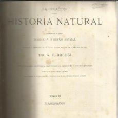 Libros antiguos: HISTORIA NATURAL. DR. A. E. BREHM. MONTANER Y SIMON EDITORES. BARCELONA. 1880. TOMO II. MAMÍFEROS. Lote 51971701