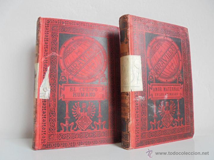 Libros antiguos: BIBLIOTECA DE MARAVILLAS. ERNESTO MENAULT. A. LE PILEUR. 1885-1886. 2 VOLUMENES. EL CUERPO HUMANO Y - Foto 2 - 52524378