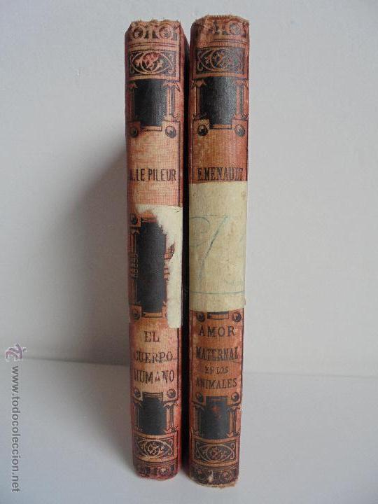 Libros antiguos: BIBLIOTECA DE MARAVILLAS. ERNESTO MENAULT. A. LE PILEUR. 1885-1886. 2 VOLUMENES. EL CUERPO HUMANO Y - Foto 3 - 52524378