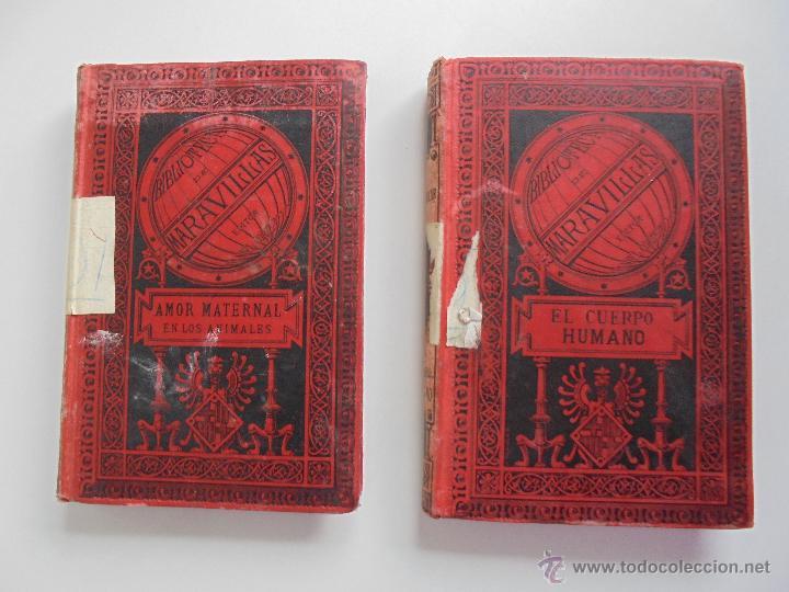 Libros antiguos: BIBLIOTECA DE MARAVILLAS. ERNESTO MENAULT. A. LE PILEUR. 1885-1886. 2 VOLUMENES. EL CUERPO HUMANO Y - Foto 8 - 52524378