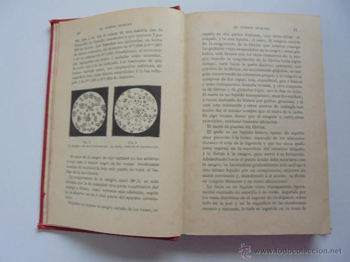 Libros antiguos: BIBLIOTECA DE MARAVILLAS. ERNESTO MENAULT. A. LE PILEUR. 1885-1886. 2 VOLUMENES. EL CUERPO HUMANO Y - Foto 13 - 52524378