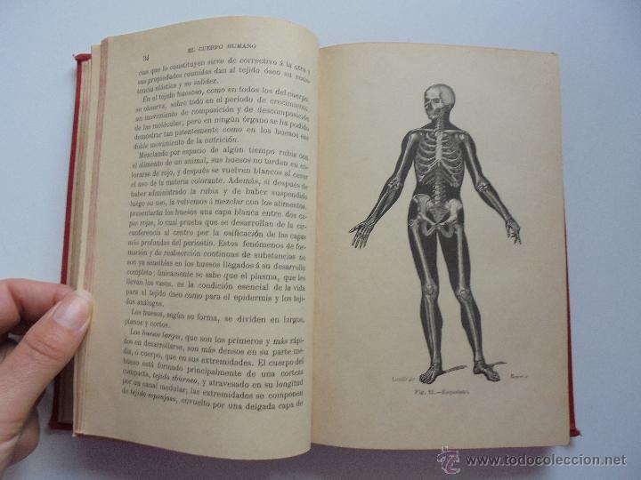 Libros antiguos: BIBLIOTECA DE MARAVILLAS. ERNESTO MENAULT. A. LE PILEUR. 1885-1886. 2 VOLUMENES. EL CUERPO HUMANO Y - Foto 14 - 52524378