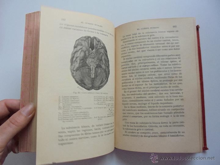 Libros antiguos: BIBLIOTECA DE MARAVILLAS. ERNESTO MENAULT. A. LE PILEUR. 1885-1886. 2 VOLUMENES. EL CUERPO HUMANO Y - Foto 19 - 52524378