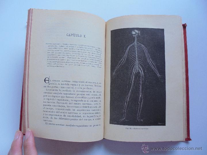 Libros antiguos: BIBLIOTECA DE MARAVILLAS. ERNESTO MENAULT. A. LE PILEUR. 1885-1886. 2 VOLUMENES. EL CUERPO HUMANO Y - Foto 20 - 52524378