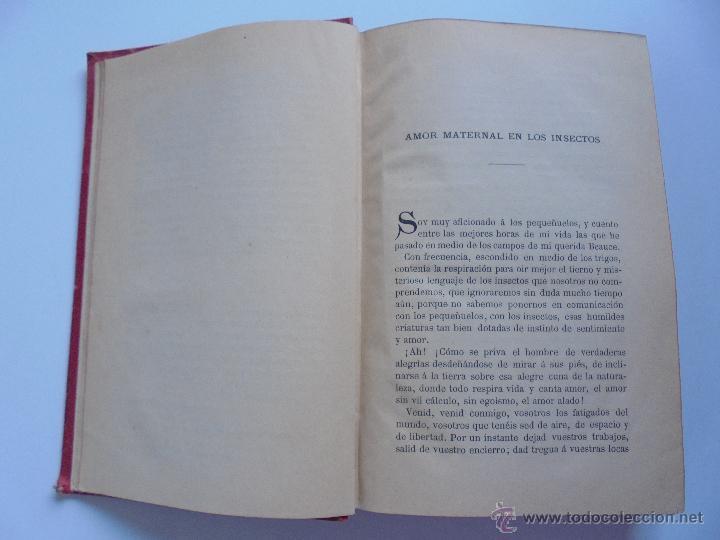 Libros antiguos: BIBLIOTECA DE MARAVILLAS. ERNESTO MENAULT. A. LE PILEUR. 1885-1886. 2 VOLUMENES. EL CUERPO HUMANO Y - Foto 35 - 52524378