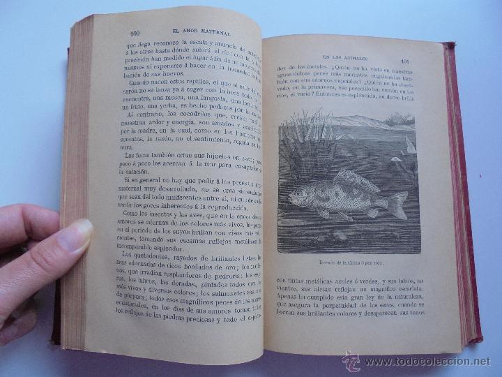 Libros antiguos: BIBLIOTECA DE MARAVILLAS. ERNESTO MENAULT. A. LE PILEUR. 1885-1886. 2 VOLUMENES. EL CUERPO HUMANO Y - Foto 38 - 52524378