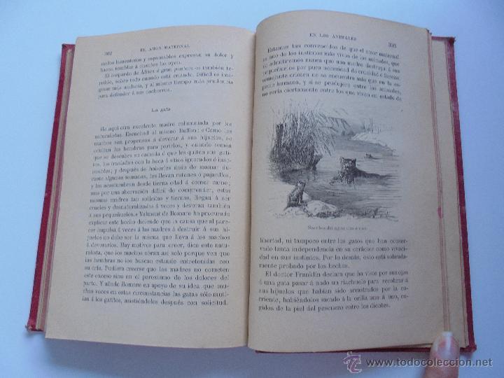Libros antiguos: BIBLIOTECA DE MARAVILLAS. ERNESTO MENAULT. A. LE PILEUR. 1885-1886. 2 VOLUMENES. EL CUERPO HUMANO Y - Foto 47 - 52524378