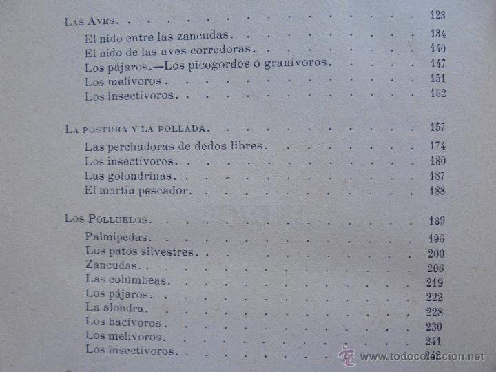 Libros antiguos: BIBLIOTECA DE MARAVILLAS. ERNESTO MENAULT. A. LE PILEUR. 1885-1886. 2 VOLUMENES. EL CUERPO HUMANO Y - Foto 50 - 52524378