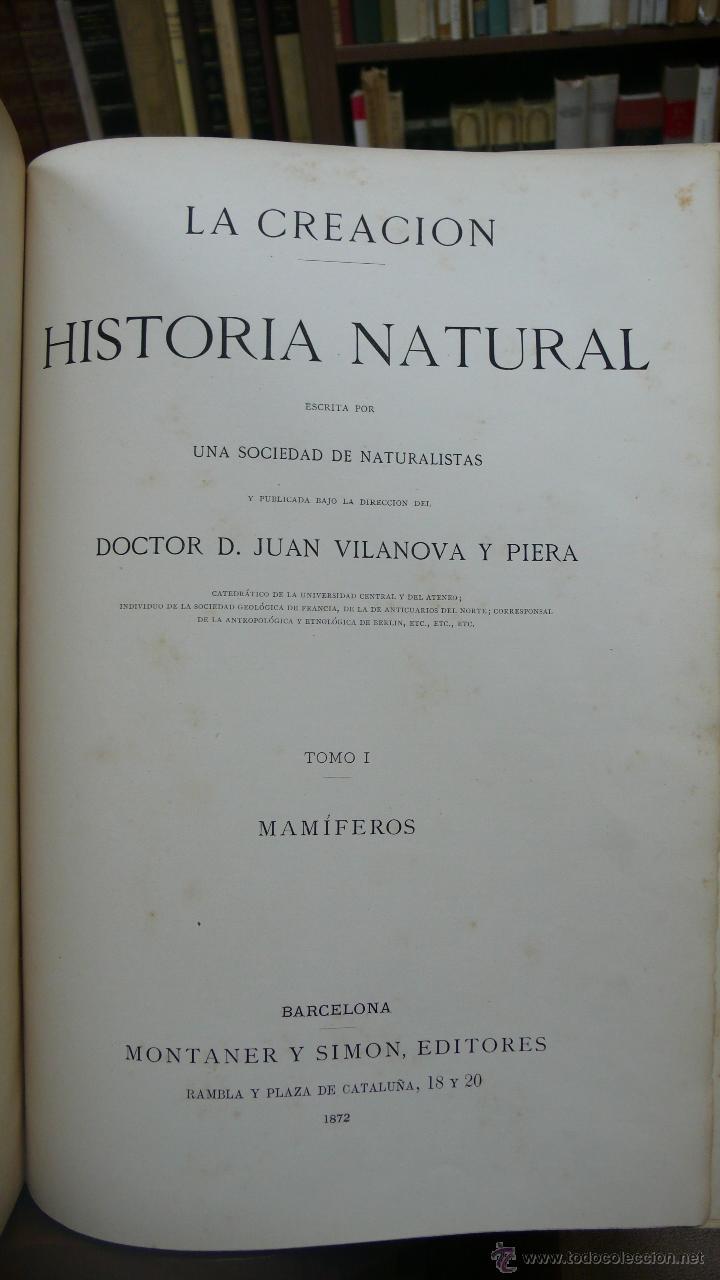 Libros antiguos: LA CREACION. HISTORIA NATURAL. JUAN VILANOVA Y PIERA. MONTANER Y SIMON. 8 VOL. 1872-76. - Foto 3 - 52884209
