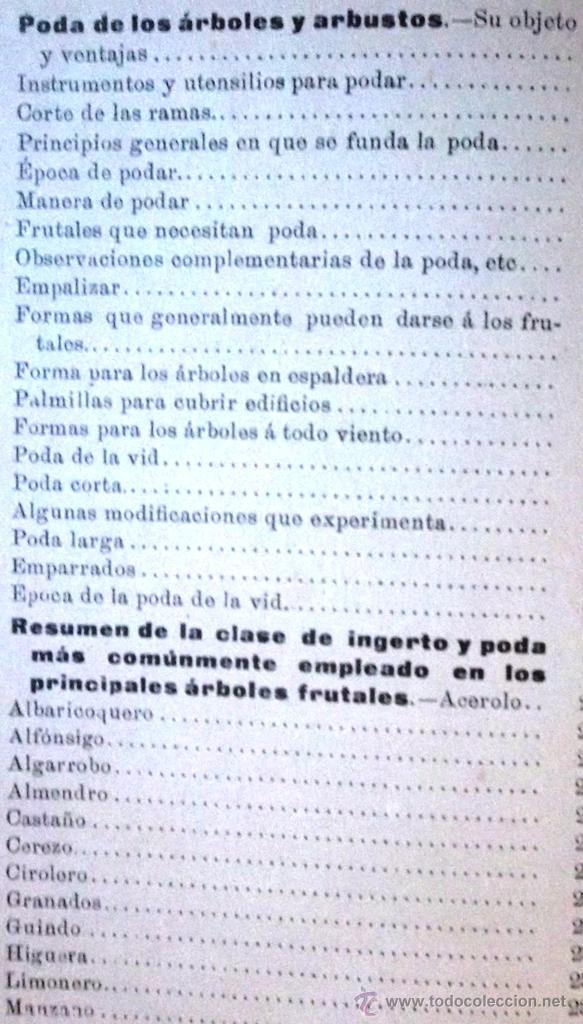 Libros antiguos: Tratado teórico-práctico del injerto y poda. García Moreno Librería de Luis Santos 1916 agricultura - Foto 7 - 53005960