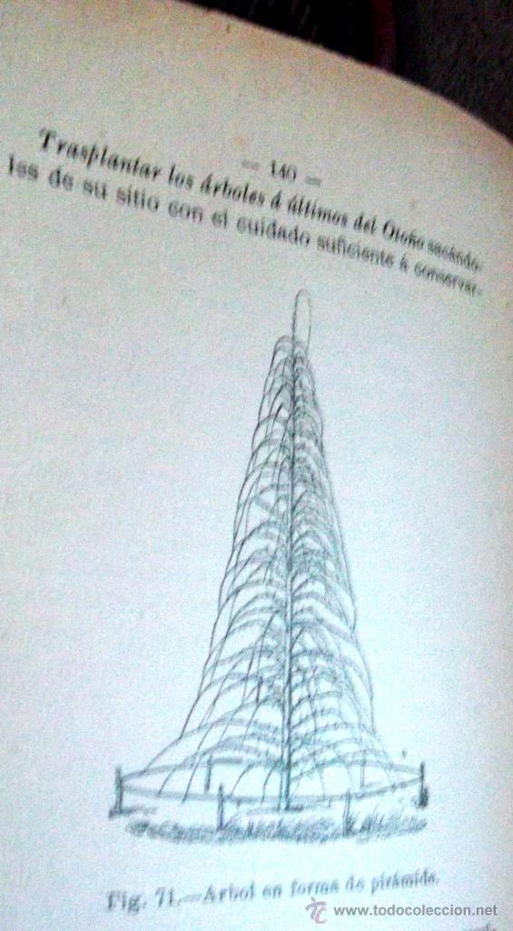 Libros antiguos: Tratado teórico-práctico del injerto y poda. García Moreno Librería de Luis Santos 1916 agricultura - Foto 9 - 53005960