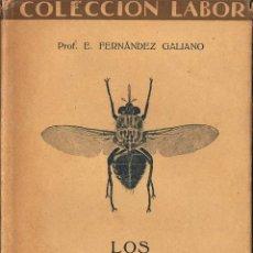 Libros antiguos: LOS ANIMALES PARÁSITOS - PROF. E. FERNÁNDEZ GALIANO. Lote 53385714