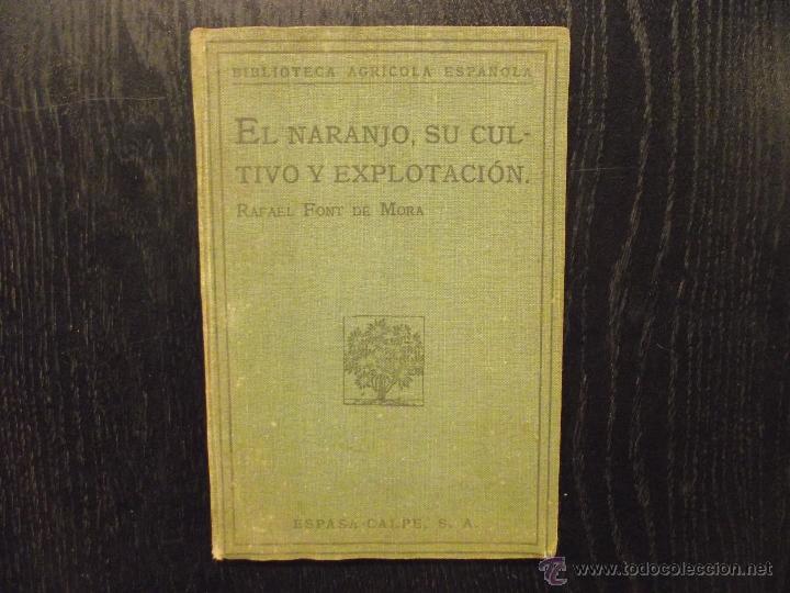 EL NARANJO,SU CULTIVO Y EXPLOTACION, RAFAEL FONT DE MORA (Libros Antiguos, Raros y Curiosos - Ciencias, Manuales y Oficios - Bilogía y Botánica)