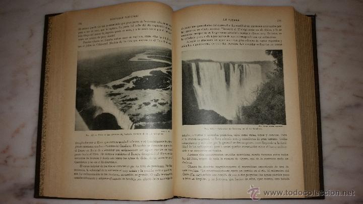 Libros antiguos: Historia natural de la creación. La tierra. El universo. - EALAND, C.A.; SCOTT ELLIOT, G.F.; GREW, E - Foto 4 - 53456332
