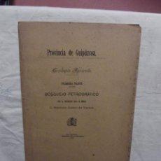 Libros antiguos: PROVINCIA DE GUIPUZCOA GEOLOGIA AGRICOLA BOSQUEJO PETROGRAFICO POR RAMON ADAN DE YARZA PRI. PART. Lote 53635104