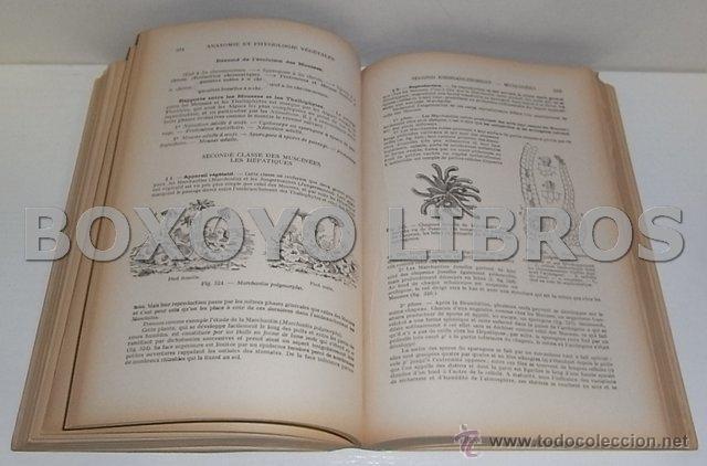 Libros antiguos: PICON, Antoine. Anatomie et Physiologie Végétales. Suivies de l étude élémentaire des principales f - Foto 3 - 54214331