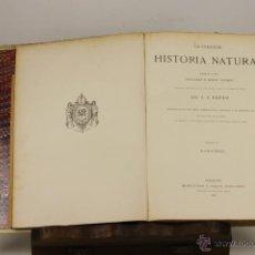 Libros antiguos: 7234 - HISTORIA NATURAL. 4 TOMOS(VER DESCRIP). A. E. BREHM. EDI. M. SIMON. 1881-1883.. Lote 127686131