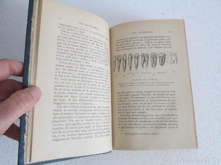 Libros antiguos: J.H. FABRE. LOS AUXILIARES. CONVERSACIONES SOBRE LOS ANIMALES UTILES A LA AGRICULTURA. 1920. - Foto 9 - 55684052