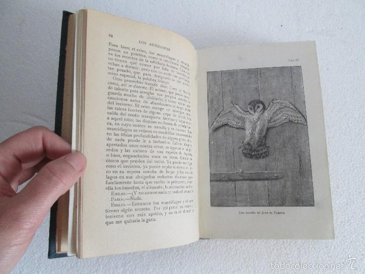 Libros antiguos: J.H. FABRE. LOS AUXILIARES. CONVERSACIONES SOBRE LOS ANIMALES UTILES A LA AGRICULTURA. 1920. - Foto 11 - 55684052