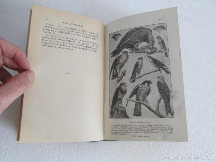 Libros antiguos: J.H. FABRE. LOS AUXILIARES. CONVERSACIONES SOBRE LOS ANIMALES UTILES A LA AGRICULTURA. 1920. - Foto 15 - 55684052