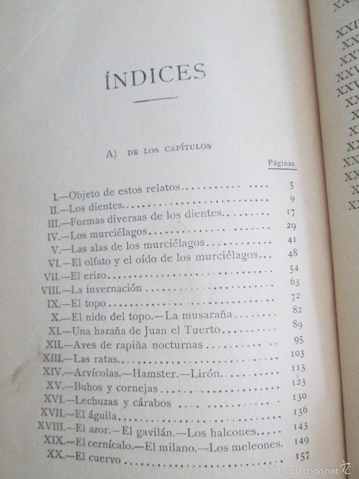 Libros antiguos: J.H. FABRE. LOS AUXILIARES. CONVERSACIONES SOBRE LOS ANIMALES UTILES A LA AGRICULTURA. 1920. - Foto 16 - 55684052