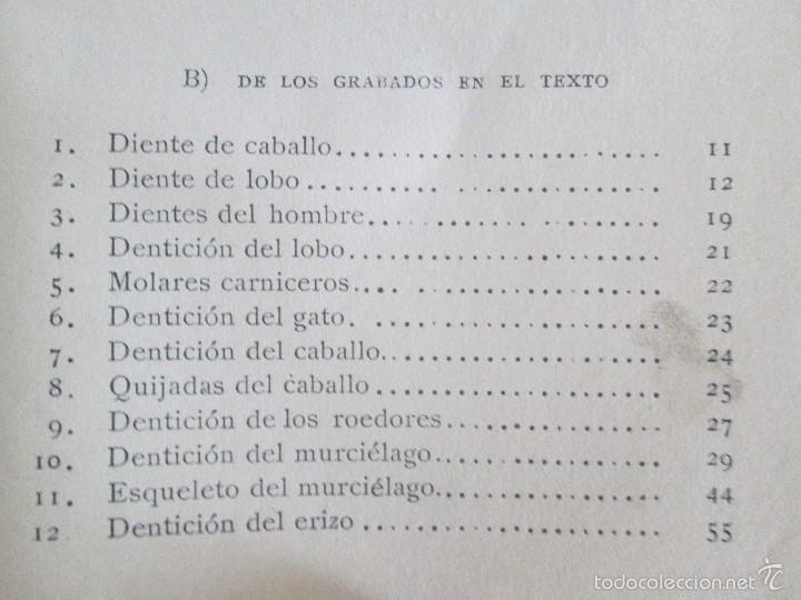Libros antiguos: J.H. FABRE. LOS AUXILIARES. CONVERSACIONES SOBRE LOS ANIMALES UTILES A LA AGRICULTURA. 1920. - Foto 18 - 55684052