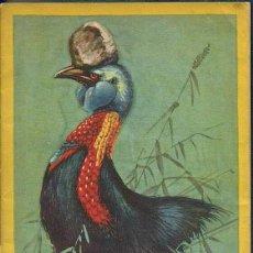 Libros antiguos: FUHRER CARL HAGENBECK'S TIERPARK. HAMBURGO ABRIL 1928. LIBRO DEL PARQUE ZOOLÓGICO. Lote 55904250