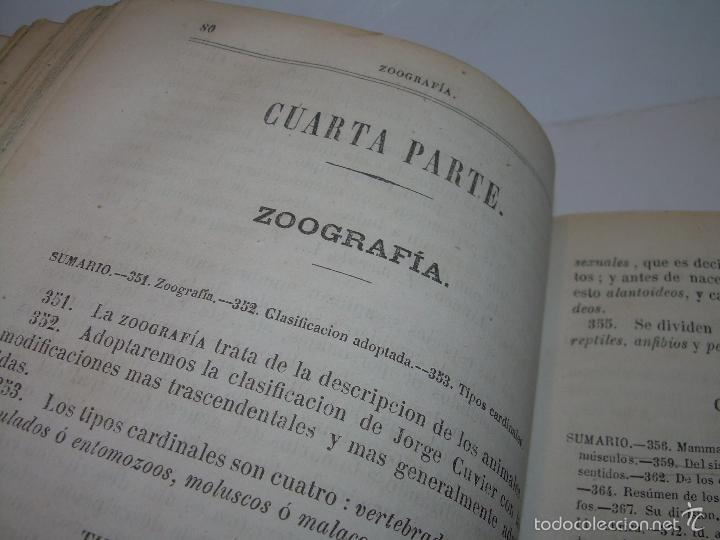 Libros antiguos: LIBRO TAPAS PIEL...HISTORIA NATURAL....ZOOLOGIA,BOTANICA,MINERALOGIA,ZOOGRAFIA.ETC..AÑO 1.870 - Foto 8 - 56514916