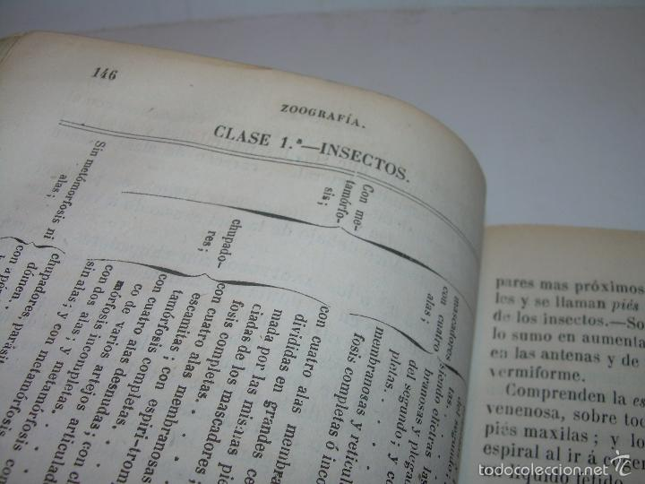 Libros antiguos: LIBRO TAPAS PIEL...HISTORIA NATURAL....ZOOLOGIA,BOTANICA,MINERALOGIA,ZOOGRAFIA.ETC..AÑO 1.870 - Foto 12 - 56514916